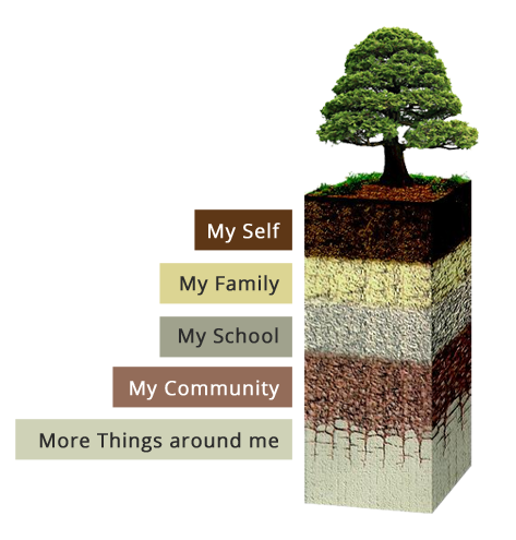 curriculum-tree