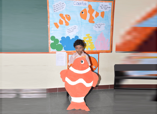Hey buddy its me the clown fish- says the nemo.