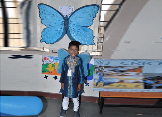 A prettiful butterfly dress.
